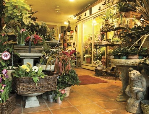 SHOP TALK: Tivoli Florist