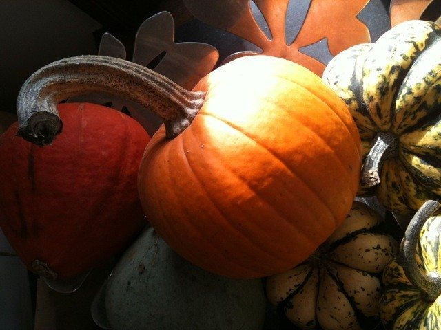FOOD BUZZ: Trick or Treats for grownups: pick up pumpkin goodies while you can