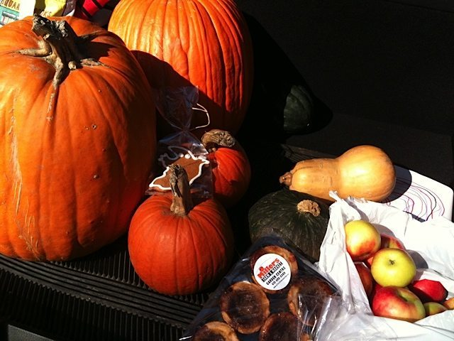 ROADTRIP: Millers' Farm in Manotick for pick-your-own pumpkins