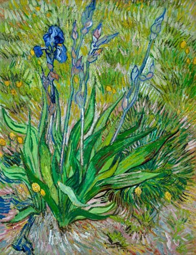 """THE ARTFUL BLOGGER: Experience the stunning works of Van Gogh """"up close"""""""