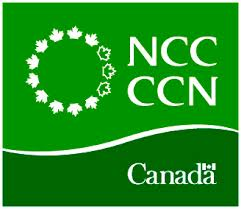 POLITICS CHATTER: Time to stop messing around and give the NCC a firm mandate