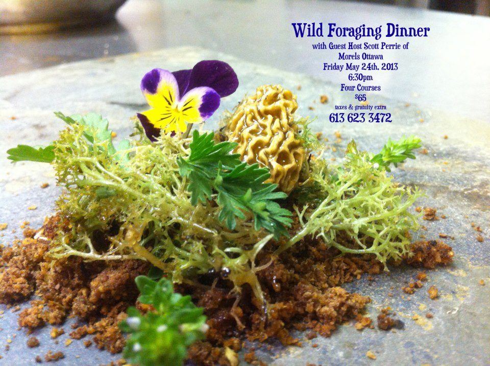 SEASONAL EATING: Chef Matthew Brearley of Castlegarth Restaurant takes us into the wild and talks about his upcoming foraging dinners