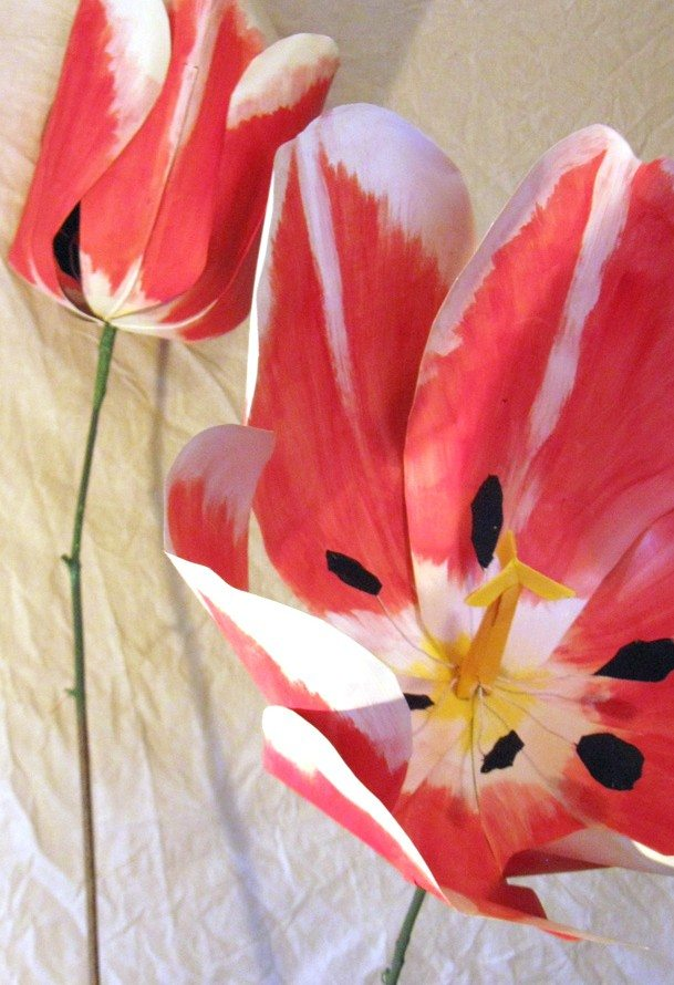 THE INSIDER: Sarah Fischer and other flower fans on BULB, the new artist market at Tulip Fest