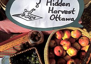 ANNE'S PICKS: Talking nuts and fruits (and community action) with Hidden Harvest Ottawa