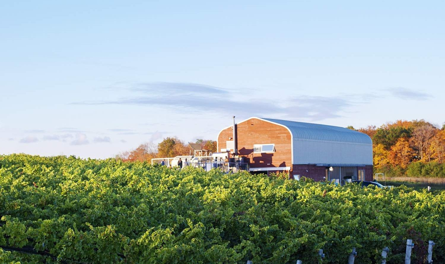 WINE TOUR: 12 must-visit wineries for your summer road trip to Prince Edward County