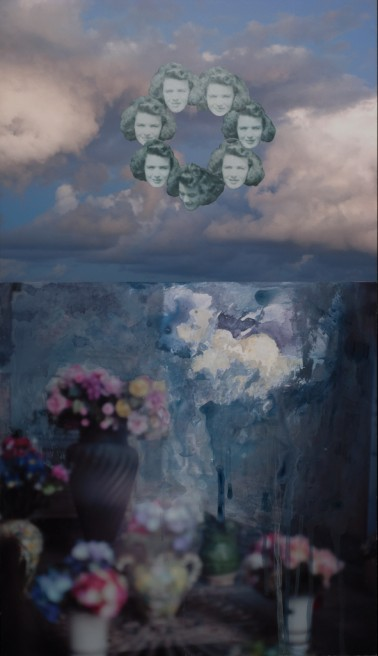 Meaghan Haughian_Annual firmament (forget-me-not)_2014_mixed media on photographs_21x12 inches_web