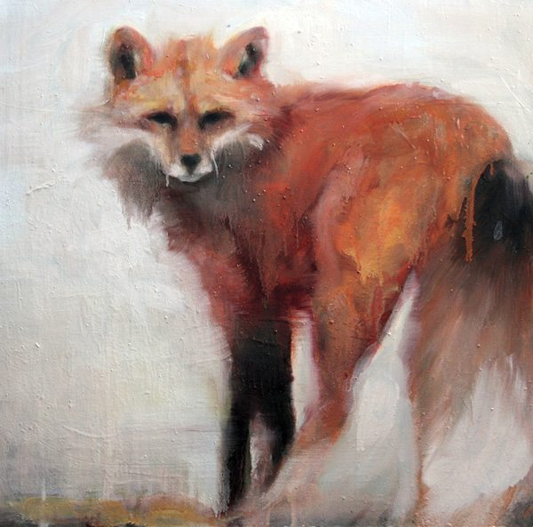 fox--gaze-oil-20x20
