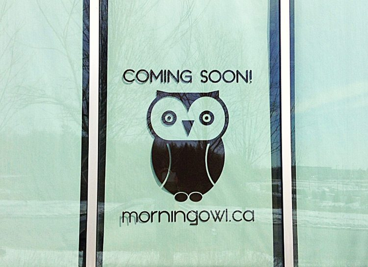 Morning Owl Coming Soon