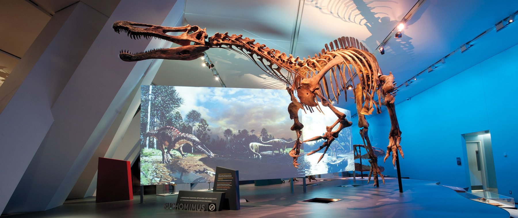 The 'Ultimate' exhibit — Dinosaurs at the Museum of Nature