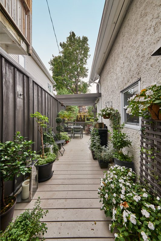 """Hamann uses a narrow walkway along the side of the house to nurture an eclectic selection of plants in pots. That profusion of potted plants continues on the busy back porch (below), where Hamann is experimenting with succulents, designing two miniature """"living pictures"""" that hang on the fence above the dining table, adding a vertical element to the garden"""