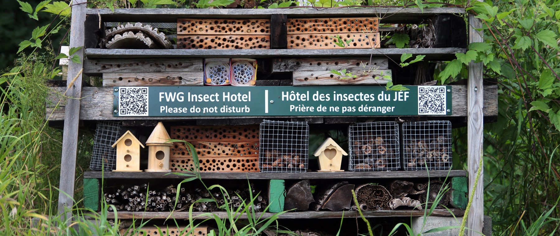 Insect Hotel — No fresh towels, but plenty of wasps