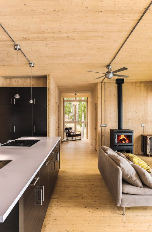 Luxe cottage wood stove