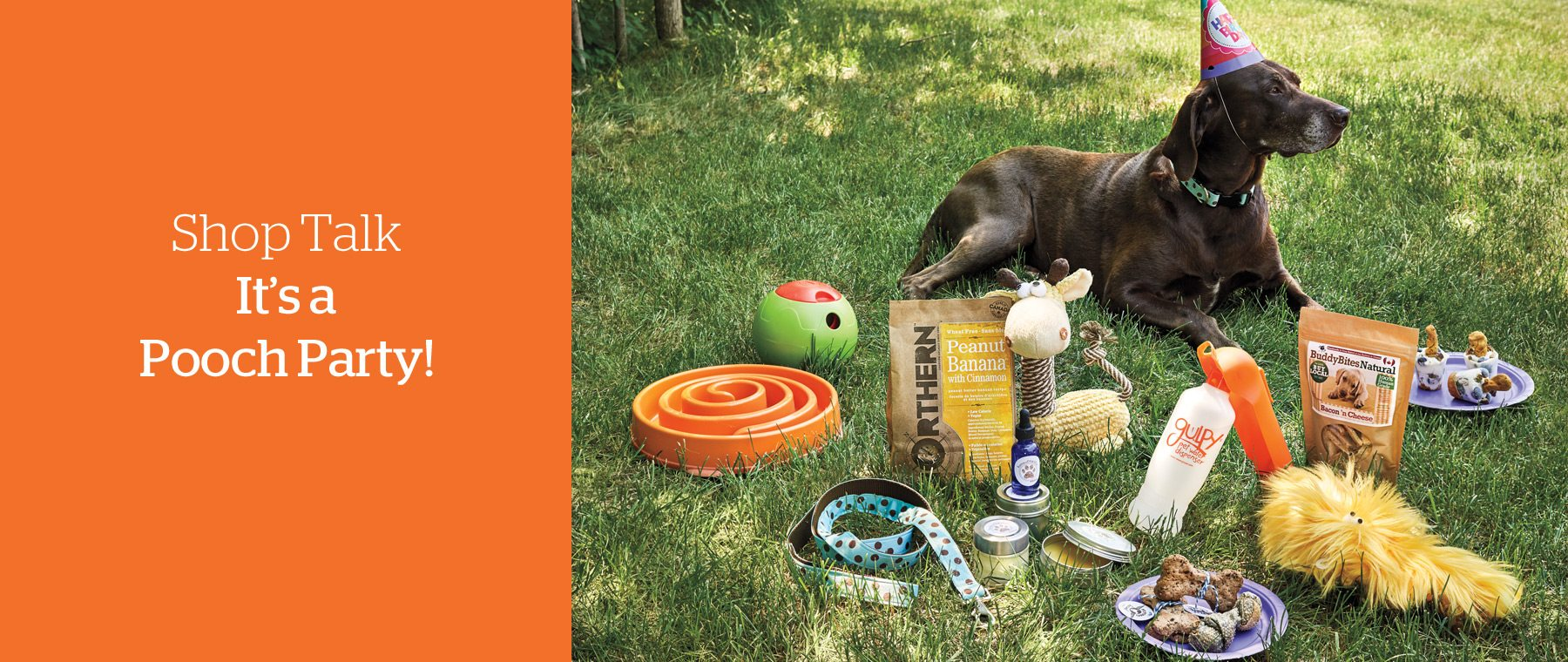 Shop Talk: Pooch Party!