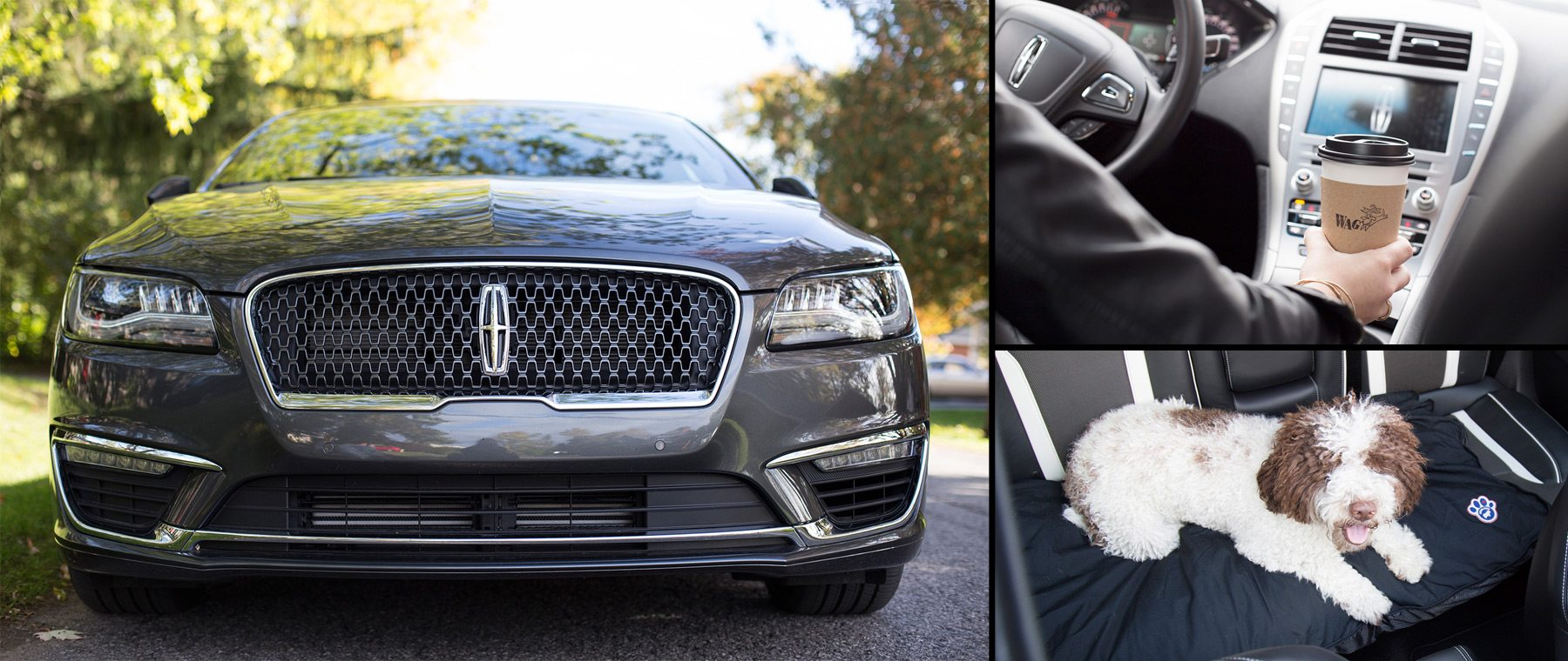 Creature Comforts with the Lincoln MKZ