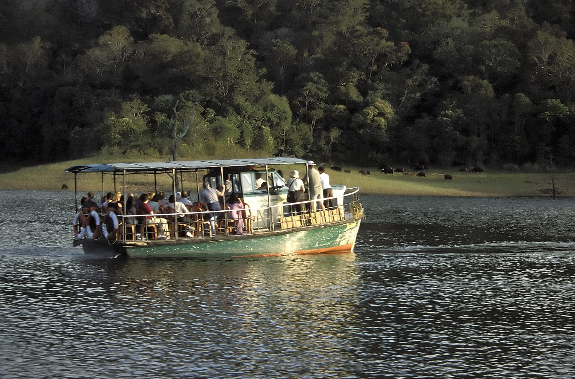 Sightseeing boat on Periyar Lake, Periyar Wildlife Sanctuary, Kerala, India