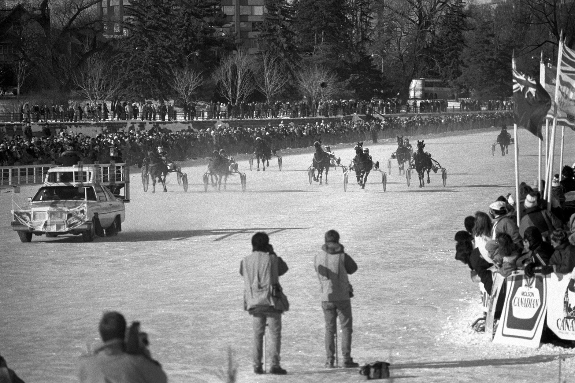 Winterlude-horse-races-1880
