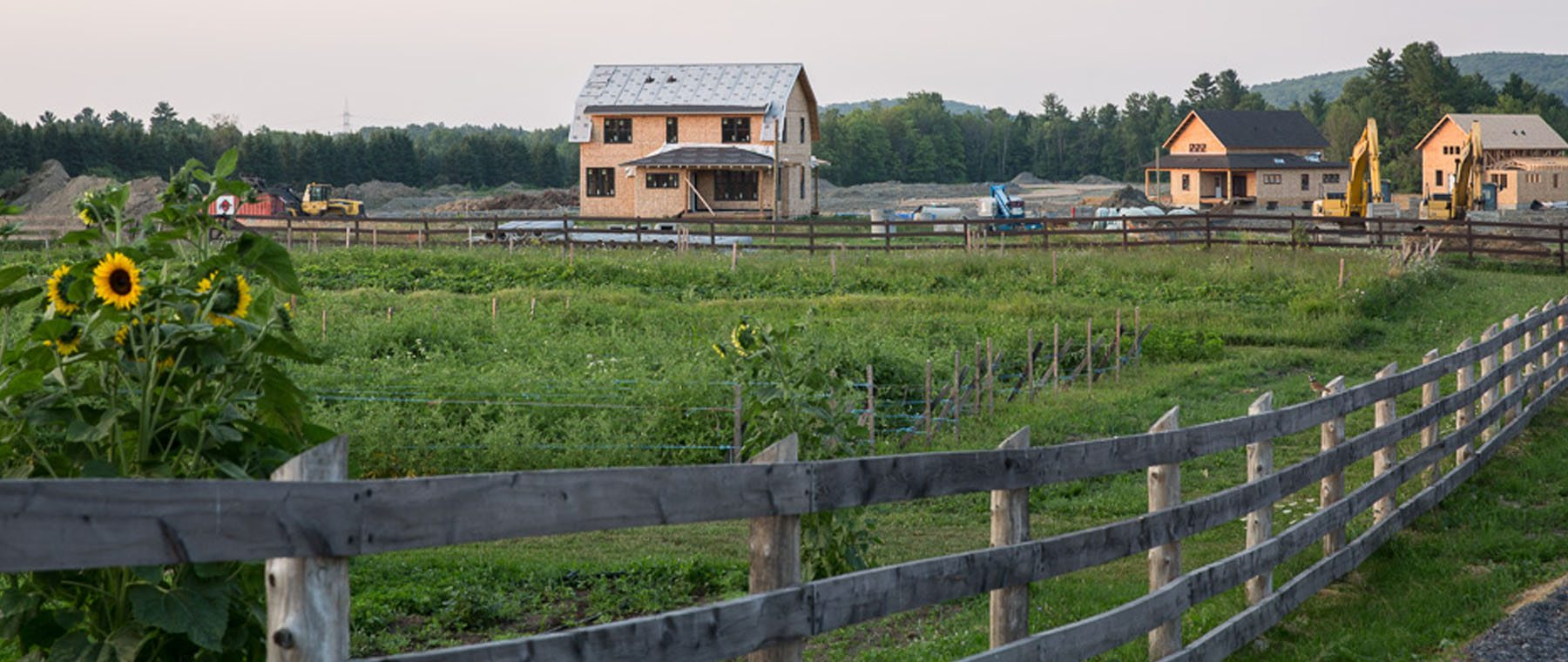 Hendrick Farm Offers a New Model For Country Living