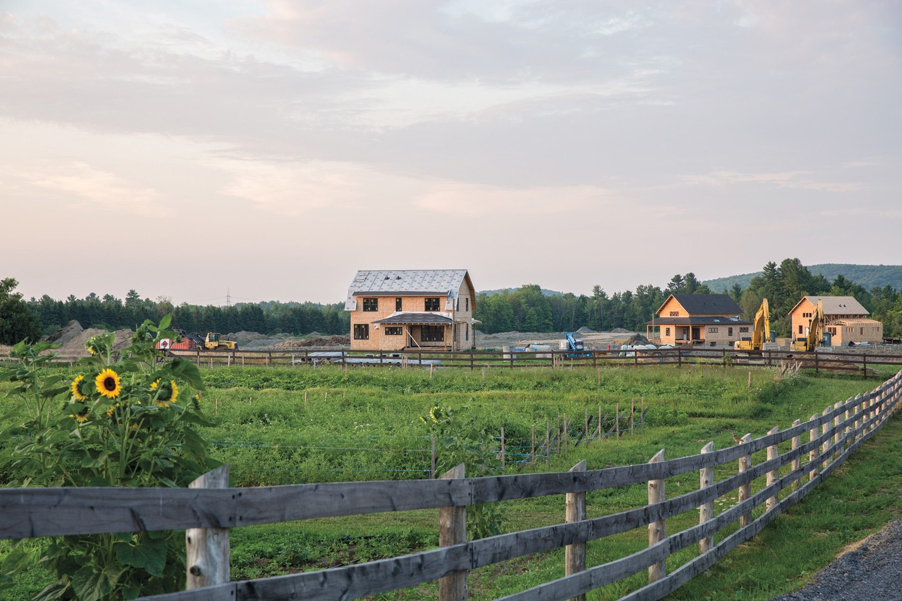 Hendrick Farm is resurrecting the concept of a true village — houses surround a working farm and are connected by roads designed to encourage interaction among neighbours. Photography by Justin Van Leeuwen