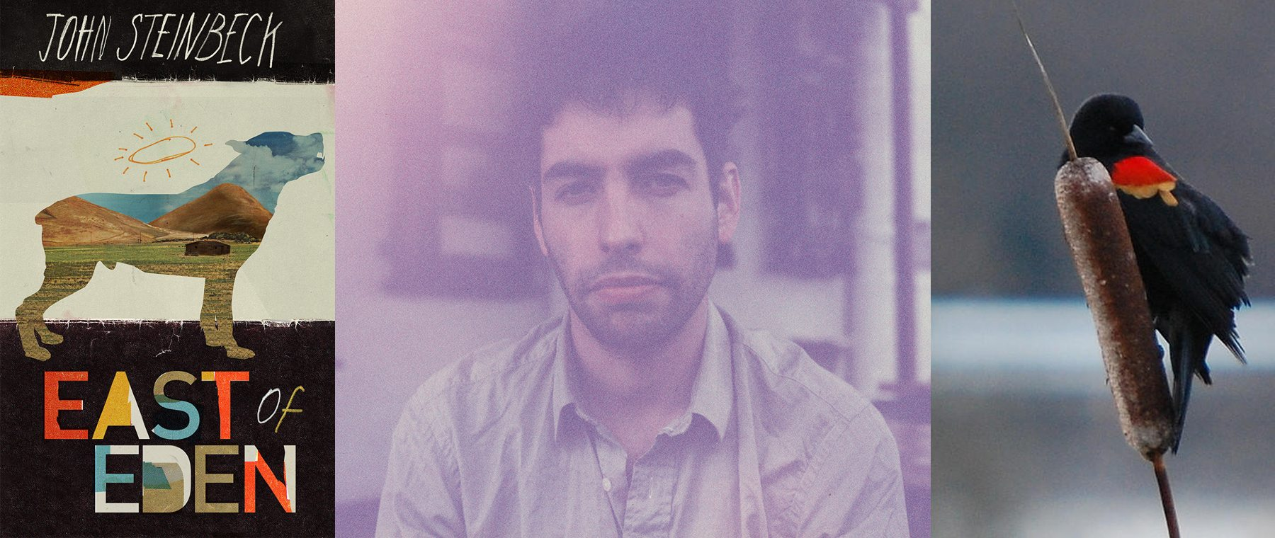 Leif Vollebekk's Twin Solitudes, a track-by-track journey through space, time, and Florida