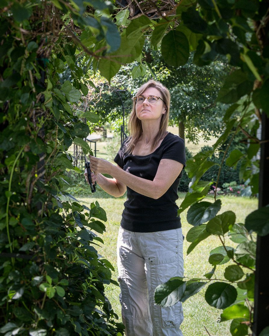 Because Sue Gallinger lives on a one-acre lot, she has the room to experiment with a range of wildlife-friendly plants and habitats. Photo: Mike Gallinger