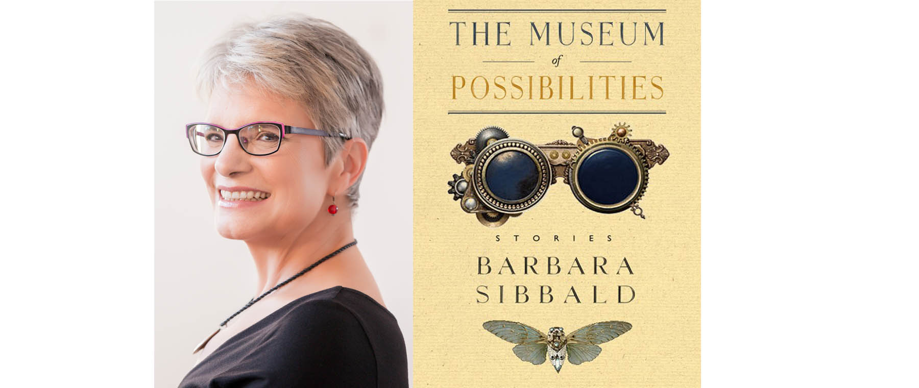 'Museum of Possibilities' offers menagerie of witty, creepy short stories by Ottawa author
