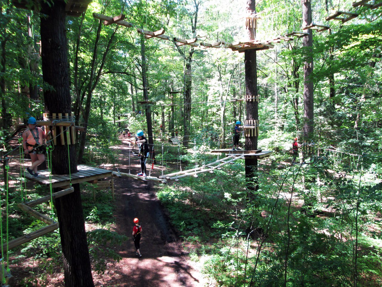 Skywood Eco Adventure