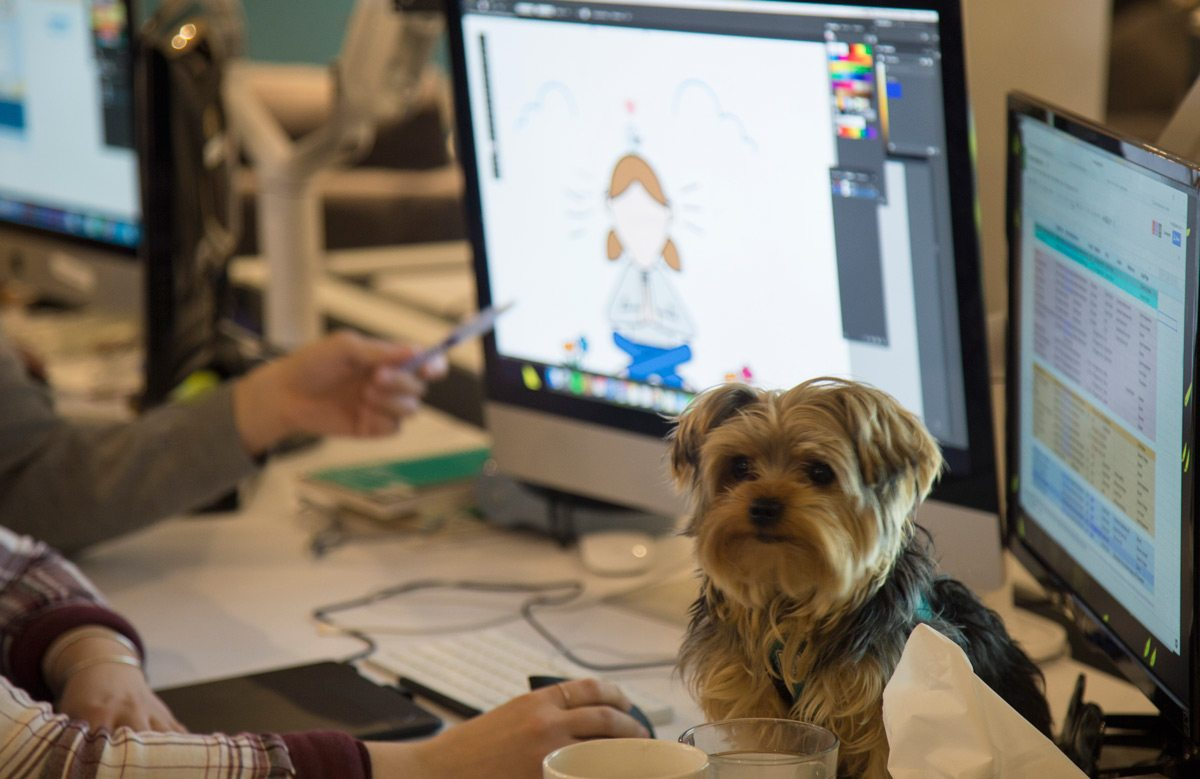 Shared employees are encouraged to bring their pets to work. Courtesy of Shared