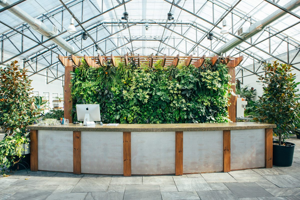 Anchored by a coffee bar from which staff serve drinks and pastries. The back side of the bar is home to a plant wall, a welcoming scene as visitors enter the building