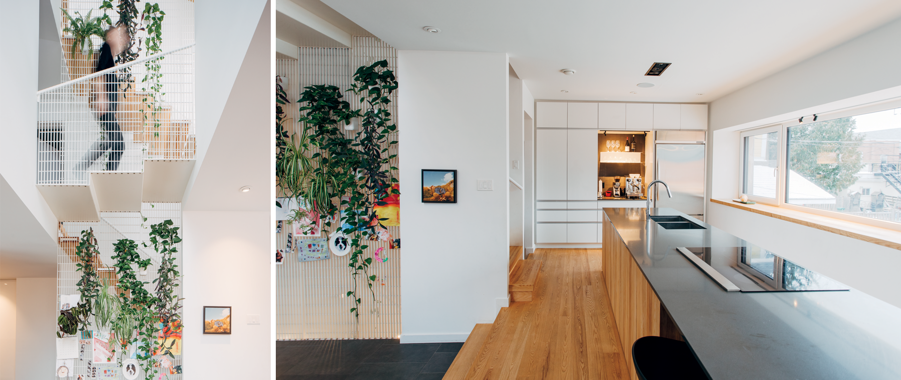 Healthy, Beautiful, and Energy Efficient: Inside a Passive House on Bayswater