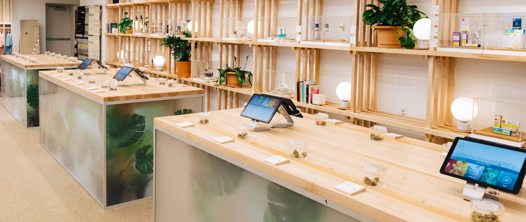 Pot Shop Primer: A design lover's guide to Ottawa's legal marijuana stores