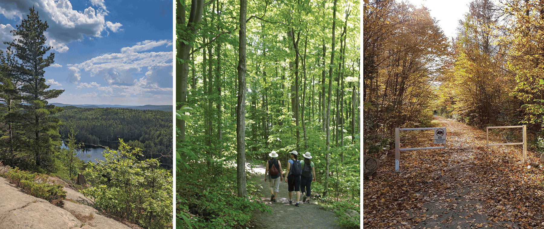 Hikes & Bites: Local trails and cute bakeries